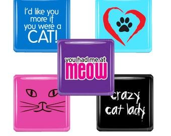 Cat Lovers Magnet Set - Crazy Cat Lady, Meow, Etc.  Bright Colors