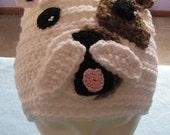 Bull Dog  Hat Crochet Pattern