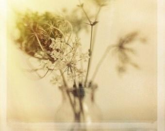 Polaroid Photography Yellow Wildflowers 8x8 Photo