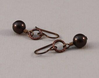 Niobium earrings, brown Niobium, Swarovski Deep Brown Everyday earrings by EarthsOpulence