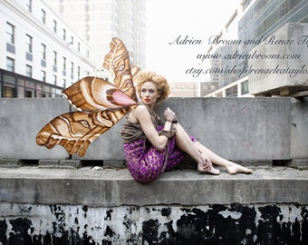 Custom Faerie wings by Renae Taylor  (Extra Large)