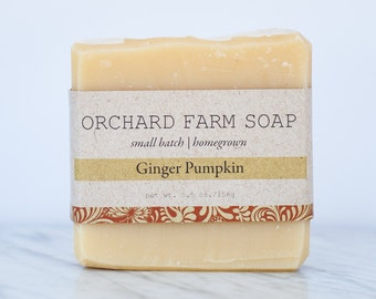 Pumpkin Ginger Bar//Pumpkin Spice Soap// Moisturizing Facial Soap// Gentle Organic Soap