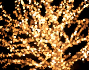 Fairy lights, Christmas lights, winter photography, yellow gold sparkle glitter holiday winter bulbs copper glow twinkle wonderland