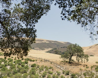 Carmel Valley View