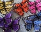 Butterfly,Mariposa, Butterfly clip, butterfly barrette, hair, hair clip, hair barrette, Mariposa clip,ready to ship
