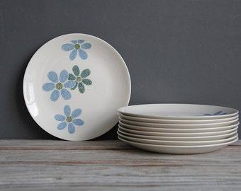 Vintage Blue Flower Plates (Service for 9)