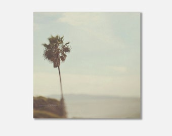 palm tree canvas, San Diego photo, beach wall art, coastal print, palm tree photo, San Diego canvas print, blue green decor