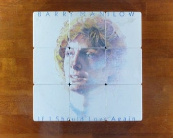 BARRY MANILOW recycled If I Should Love Again album cover art coasters with wacky record bowl
