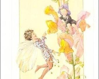 Margaret Tarrant postcard,  vintage postcard, Fairy Finds Young Boy in Snap Dragon vintage postcard, Medici postcard