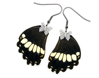Handmade  Real Butterfly Wing Earrings (Papilio Polytes Hindwing - E217)