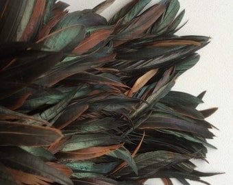 RUSTICA COQUE FEATHERS  / Bronze, Natural, Not dyed, iridescent   /  172