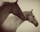 Horse Photography, black and white horse photography, fine art equine photography, Sepia horse art print, Surreal Horse Photography