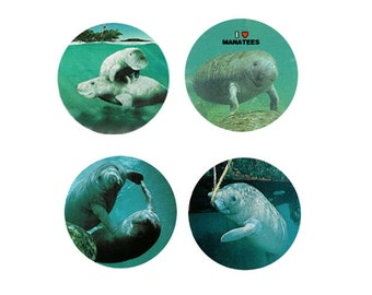 Manatee Magnets:  4 Cool Manatees for your home, your collection,  or to give as a unique gift
