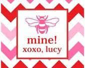 BEE MINE Preppy Chevron Valentine Sticker, Tag, Enclosure Card - Set of 24
