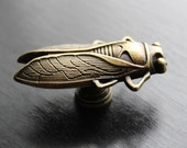 Insect (Cicada) drawer knobs in Brass Toned Metal (MK111)