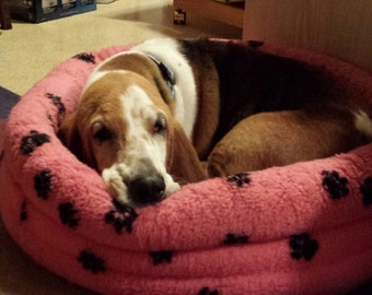 Round Bed - Size Medium 19  inches - for your pet that loves to snuggle by Doodlebug Duds