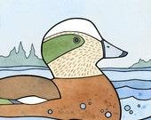 American Wigeon Duck Print, Whimsical 5x5 Illustration