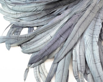 Magnifica Rooster Tail Feathers - Handpicked, Silky Grey (10pcs)