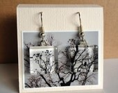 Glass Tile Photo Earrings - Tree with birds and eagle