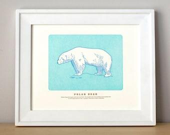 Polar Bear, Letterpress Print