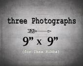 IKEA Ribba prints/ 9x9 photography set of 3 prints for Ribba / Save 30%
