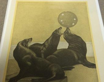 Pail bransom art circus seals  8 x 10.
