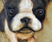"8 x 10 IN - ""Boston Terrier"" - Puppy Dog Farm Folk Art Giclee print from my original painting"