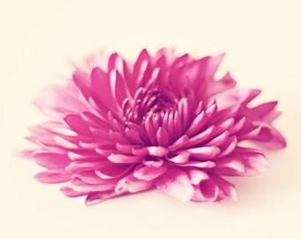 floral print, girl room decor, floral nursery art, toddler girl room, flower photography, floral artwork, pink floral bedroom art, wall art