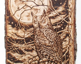 Pyrography Midnight Owl Plaque