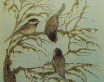 Chickadees Sparrows Birds Art Card Greeting Card Nature Trees Picture Drawing