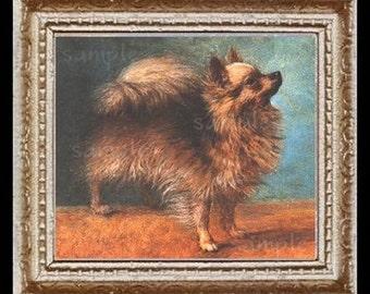 Vintage Pomeranian Dog Miniature Dollhouse Art Picture 6309
