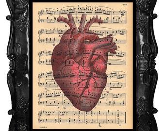 Anatomical HEART Art Print red human HEART Anatomy Book Print Vintage  HEART Art Print Music Sheet Anatomical Heart
