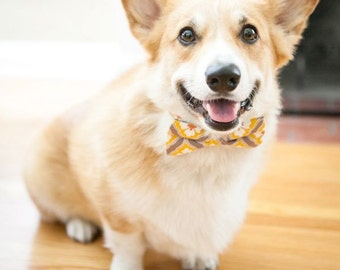 2 colors to choose from! Dog Bow Tie Collar Orange Yellow Flower collection