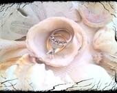 Seashell Ring Dish (3), Shell Ring Holder (3), Ring Dish, Jewelry Holder, Wedding Ring Holder, Ring Holder, Jewelry Box, Wedding Gift