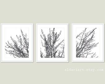 Modern Spring Tree Branches Prints - Modern Tree Wall Art - Modern Decor - Charcoal Grey - Tree Triptych Wall Art - Aldari Art