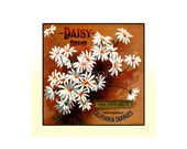 Small Journal - Daisy Brand Oranges - Fruit Crate Art Print Cover
