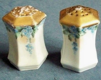 Salt Pepper SHAKERS hand painted blue floral Prussia