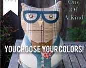 Huggable one-of-a-kind custom Owl Pillow