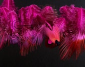 Pink Pheasant Feathers Pink Colored Craft Feathers Hot Pink Feathers Patterned Real Bird Feathers Small Size Unique Fly Tying Feather, 20