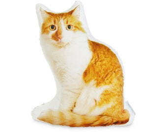 Lorenzo the Orange Cat Printed Pillow