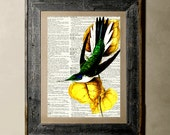 HummingBird - Printed on a Vintage Dictionary, 8X10, dictionary art, paper art, illustration art, collage