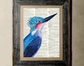 Buy 1 get 1 Free - Blue Bird - Printed on a Vintage Dictionary, 8X10, dictionary art, paper art, illustration art, collage