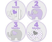 Baby Month Milestone Stickers, Girls Monthly Stickers, Monthly Bodysuit Stickers, Monthly Baby Stickers, Month by Month, Elephants (G121)