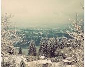 Winter photograph, snow scene, woodland photography, snow wall decor, bathroom decor