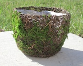 Moss and Twig Basket or planter