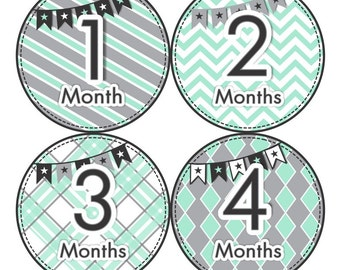 Baby Month Milestone FREE Month Baby Sticker Baby Month Milestone Stickers Baby Boy Bodysuit Stickers Baby Photo Props Grey Mint Black 061B