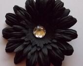 Black Daisy Flower Clip