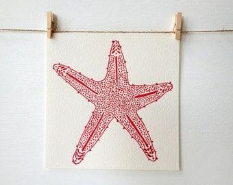 Starfish Beach Art - Coral - Northern Starfish - Girls Nursery - Baby Girl - Kitchen Art - Bathroom Art