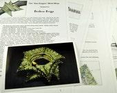 "Tutorial for the ""Sea Dragon"" Wrist Wrap (inspired by contemporarygeometricbeadwork.com"