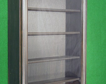 Wall Curio Cabinet, display case, shadow box